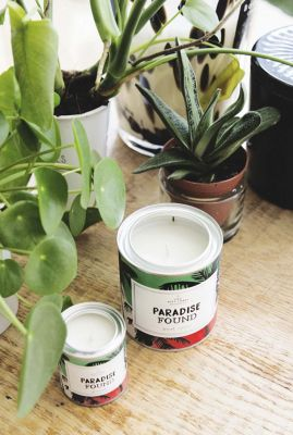 geur kaars in blik paradise jasmin-vanilla  1011751