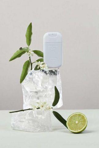 hand sanitizer margarita spirit pocket size