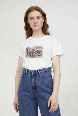 wit t-shirt met alpaca foto opdruk naalin 30002309