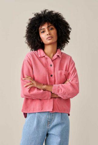 roze blouse met rib dessin pilou12 r0775