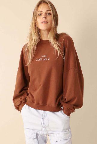 donker bruine oversized sweater met ballonmouwen w20t439lab